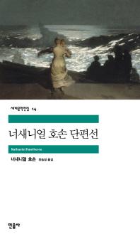 너새니얼 호손 단편선(세계문학전집 14)