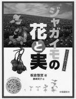ジャガイモの花と實