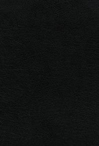 [해외]Niv, the Grace and Truth Study Bible, European Bonded Leather, Black, Red Letter, Comfort Print (Bonded Leather)