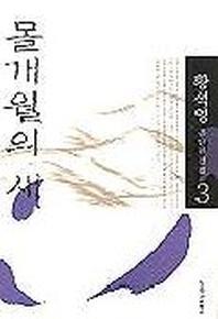 몰개월의 새(황석영전집 3)