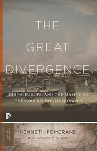 [해외]The Great Divergence