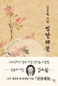 진달래꽃(포켓북(문고판))