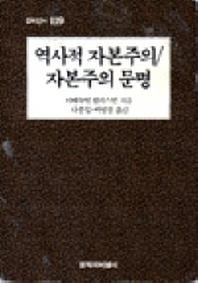 역사적 자본주의/자본주의 문명(창비신서 119)