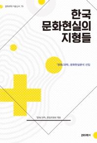 한국 문화현실의 지형들(문화과학 이론신서 79)