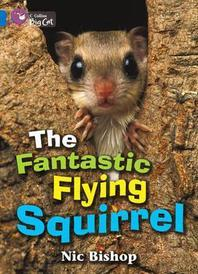 [해외]The Fantastic Flying Squirrel Workbook (Paperback)