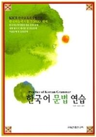 한국어 문법 연습(Paperback)
