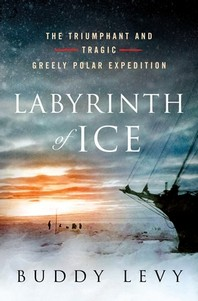 [해외]Labyrinth of Ice