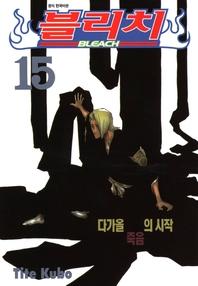 블리치. 15