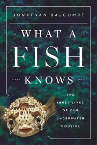 [보유]What a Fish Knows