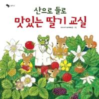 산으로 들로 맛있는 딸기 교실(바람그림책 21)