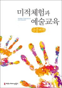 미적체험과 예술교육(큰글씨책)(예술교육총서 2)