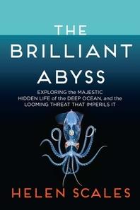 [해외]The Brilliant Abyss