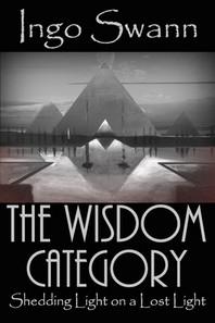 [해외]The Wisdom Category (Paperback)