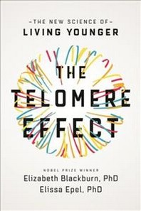 Telomere Effect