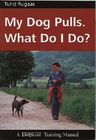 [해외]My Dog Pulls. What Do I Do?