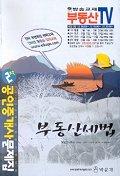 부동산세법(공인중개사 2차 문제집)(부동산TV)