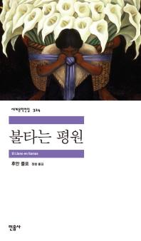 불타는 평원(세계문학전집 324)