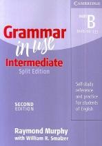 GRAMMAR IN USE INTERMEDIATE SPLIT EDITION PART B(2E)