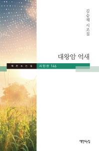 대왕암 억새(책만드는집 시인선 146)(양장본 HardCover)