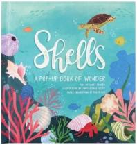 [해외]Shells