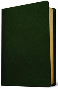[해외]Baylor Annotated Study Bible (Leather)