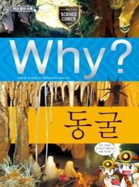 Why? 동굴(초등과학학습만화 27)(양장본 HardCover)