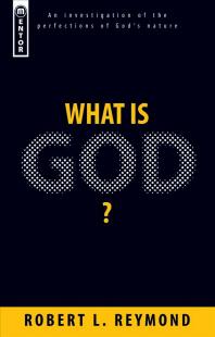 [해외]What Is God? (Paperback)