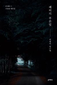 폐허의 푸른빛(산지니평론선 15)