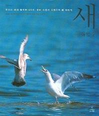새 (자연과 인간 5)