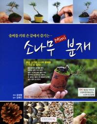 소나무 Mini 분재 --- 약간사용감, 앞장 서명