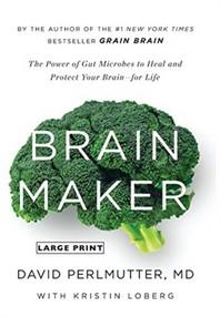 [해외]Brain Maker (Hardcover)
