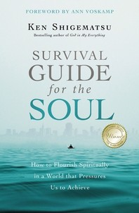 [해외]Survival Guide for the Soul (Paperback)