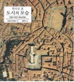 역사로 본 도시의 모습(Paperback)