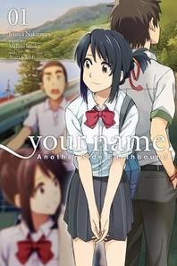 [해외]Your Name. Another Side (Paperback)