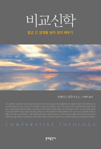 비교신학(종교학총서 12)