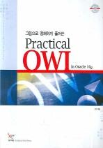 PRACTICAL OWL IN ORACLE 10G(그림으로 명쾌하게 풀어쓴)(반양장)
