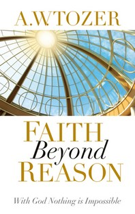 [해외]Faith Beyond Reason