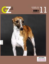 GZ 2020년 11월호