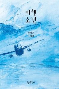 비행소년(경기문학 34)