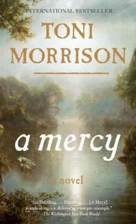 [해외]A Mercy