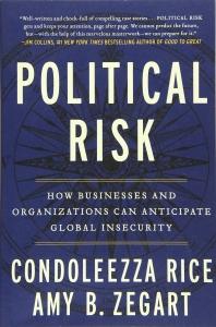 [해외]Political Risk (Paperback)
