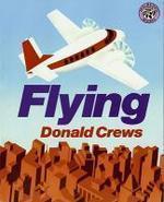 [해외]Flying
