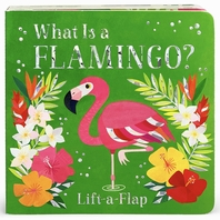 What Is a Flamingo?