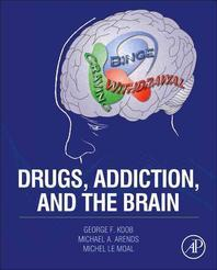 [해외]Drugs, Addiction, and the Brain