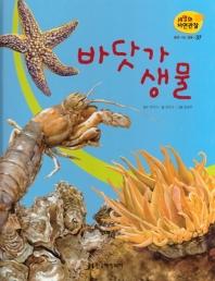물에 사는 동물. 37: 바닷가 생물(세밀화 자연관찰)