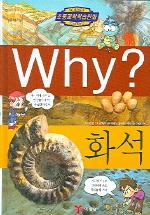 Why 화석