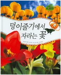 덩이줄기에서 자라는 꽃(꿈틀꿈틀 자연관찰 52)(양장본 HardCover)