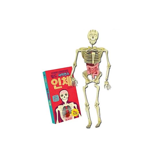 [한울림어린이] 빌드 사이언스_인체 [76cm 대형 model] / 비닐랩핑 상태
