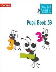 [해외]Pupil Book 3b (Paperback)
