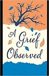 [해외]Grief Observed (Paperback)